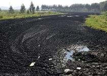 污泥处理不能全靠市场 资源化利用还需时日
