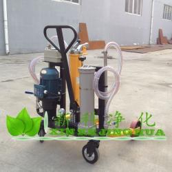 汽油防爆加油机lyc 32a滤油机加油站