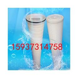 带骨架专业水处理滤芯pall水滤芯浸水滤芯折叠膜水滤芯科兰迪