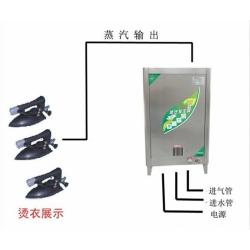 新上燃气蒸汽锅炉_小型液化气蒸汽锅炉