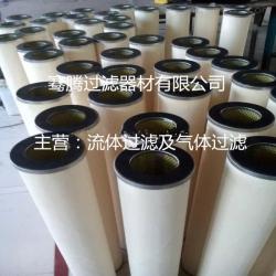 PCHG-12 天然气滤芯PECO燃气滤芯PCHG-12