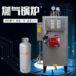 燃气锅炉30KG蒸汽发生器锅炉全自动工业酿酒锅炉