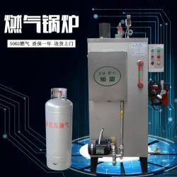 旭恩爆款50KG燃气蒸汽发生器销售中心