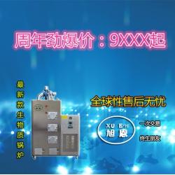 旭恩爆款100KG生物质蒸汽锅炉供应商