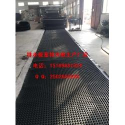 常德屋顶绿化排水板%岳阳20公分蓄排水板