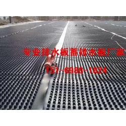 小区绿化车库排水板亳州/马鞍山2.5公分蓄排水板