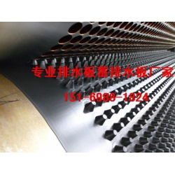 车库蓄排水板2.5公分1.2公分3公分牡丹江送货
