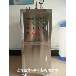 供应48KW小型不锈钢电加热蒸汽发生器