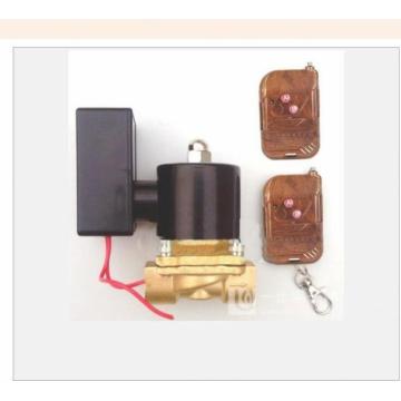 ZCZ系列遥控电磁阀