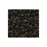 除重金属 除铁锰 除氨氮 除放射物 防垢防锈等滤料