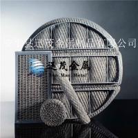 供应304/316丝网除雾器 洗涤塔丝网除沫器 欢迎定制