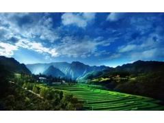 绿色发展 建设美丽中国