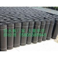 南京1公分2公分地下室排水板+卷材滤水板