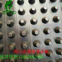 防渗排水板周口5公分高强度排水板