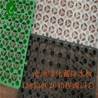 沧州绿化蓄排水板(15高排水板猪年吉祥)