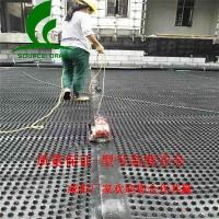 咸阳2公分3公分车库绿化排水板-质量大全