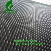 车库排水板遂宁耐根刺12高排水板)专业生产