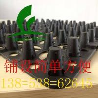 供应全新料绿色白色蓄排水板(环保绿化专用)