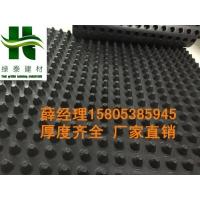 金华地下室排水板+PE疏水板承压强耐腐蚀+价格低