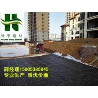 枣庄2公分蓄排水板5公分车库滤水板@山东厂家