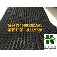 邢台60高10高凸片排水板=潍坊车库排水板