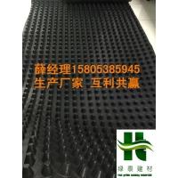 泸州地下室底板排水板【HDPE隔水板】行业