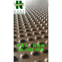泉州车库排水板(莆田1公分2公分滤水板)