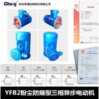 YFB2粉尘防爆三相异步电动机 申银防爆电机厂家直销