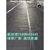 大同1.6公分20高排水板~郑州车库滤水板