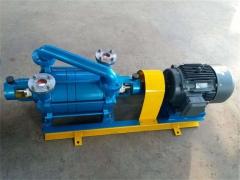 解析水环泵内的流动过程