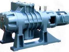 罗茨泵的工作原理及结构特点