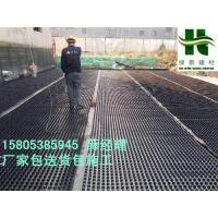 南通2.5公分排水板无纺布-濮阳车库塑料排水板