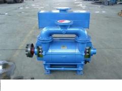 什么是水环式真空泵?