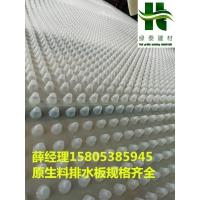 山东潍坊15高2公分车库排水板—复合200克丙纶布