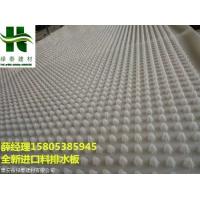 承德1mm厚10高全新料排水板-地下室疏水板