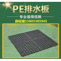 郴州2公分3公分蓄排水板=车库绿化透水板