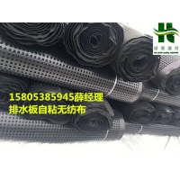 怀化丨武汉12高20高车库底板排水板-地下室