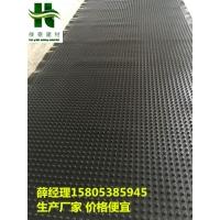 惠州30高2.5公分排水板用于地下室建筑作用