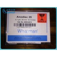 whatman  Anodisc25 AAO膜板 氧化铝膜