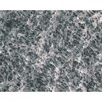T100A047A日本Advantec疏水性PTFE滤膜