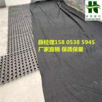 廊坊2公分蓄排水板√1.0厚高分子车库排水板