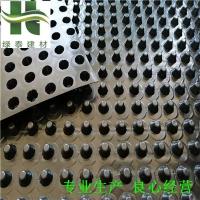 营口车库排水板价格(16高20高)疏水板厂家