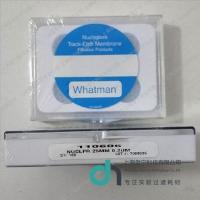110602 Whatman Nuclepore 聚碳酸脂膜