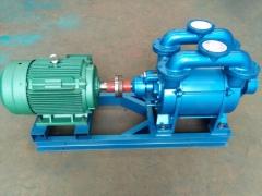 真空泵运行期间轴承发热怎么办?