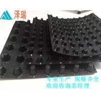 南京地下室顶板排水板-20高25厚蓄排水板