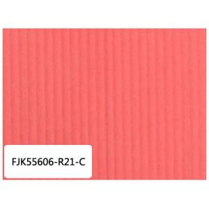 国产机空两用滤纸 FJK55606-R21-C