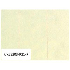 国产机空两用滤纸 FK55203-R21-P