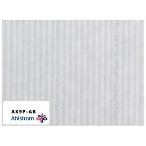 奥斯龙(韩国)空气滤纸 AK9P-AB
