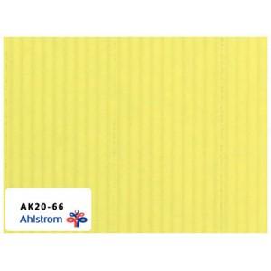 奥斯龙(韩国)机空两用滤纸 AK20-66